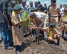 WWF-Kenya CEO planting trees with scouts